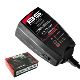 Cargador Bateria 6 Voltios / 12 Voltios BA10